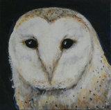 Barn Owl Linda Farrington