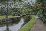 Ducks in Westgate Gardens - Bob Male
