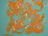 Splash (Blue), Julia Parker
