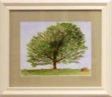 Tree Canopy, Brenda Thomas