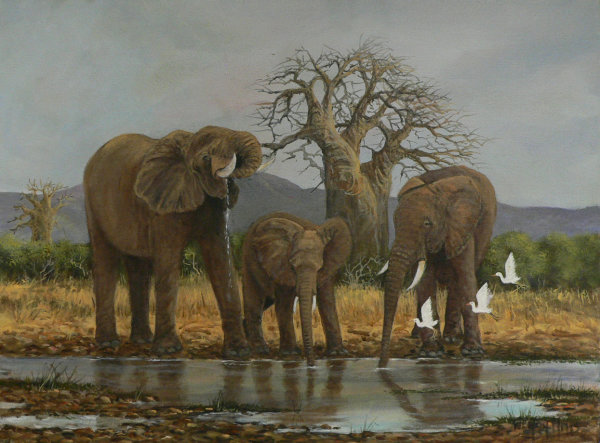 Waterhole Wendy Mills