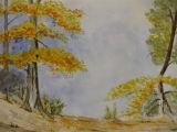 Autumn - Linda Ledbrook