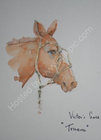 """""""Trueno"""" - Victor's horse"""