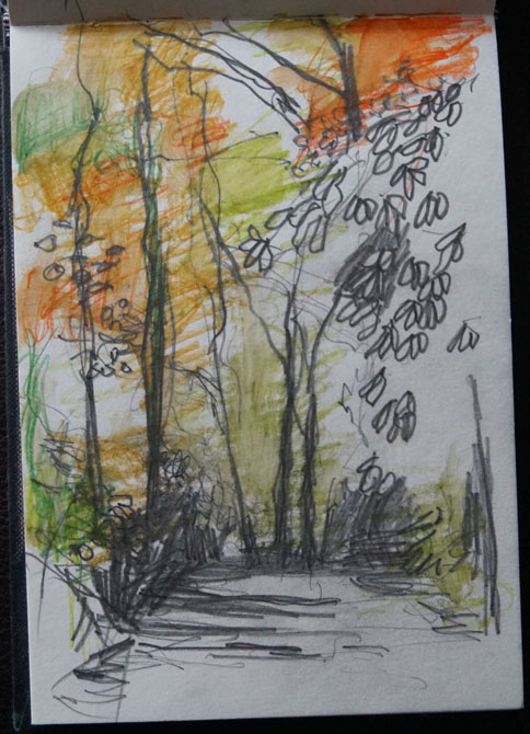 Sketch-for-Woodland-series