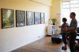 Solo Exhibition Creative Arts Hub 2016 - 1