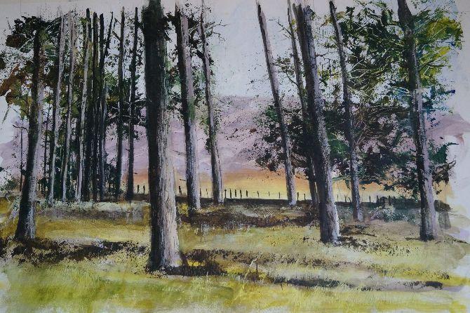 Woodland Landscape - Series 2 - 23A