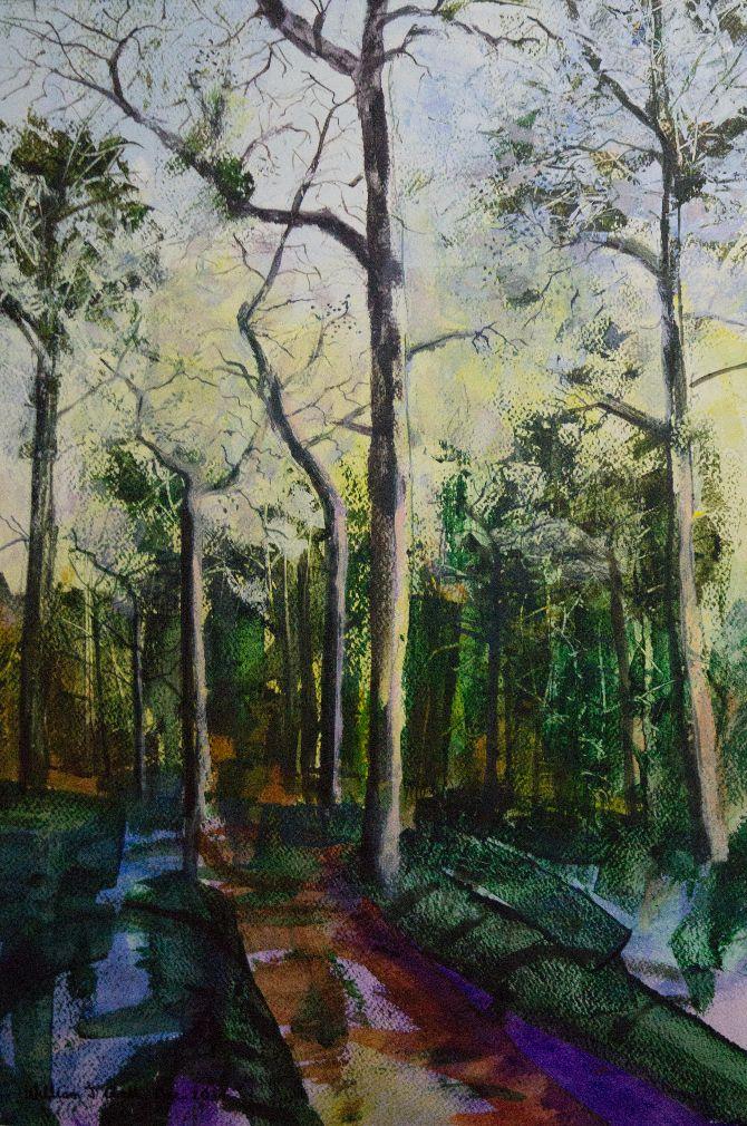 Woodland Landscapes Series 2 - 4
