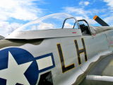 Mustang, Sywell