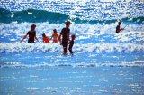 Surfer Family