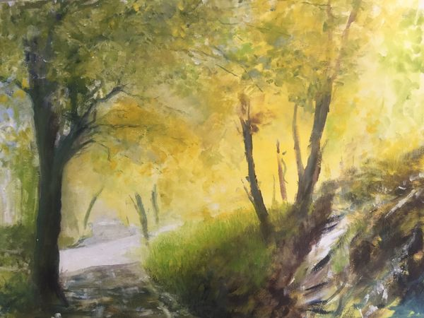 Jeff Ellis. Sunburst Through The Woods.