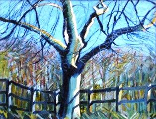 Untitled (oils) Liz Hutchinson