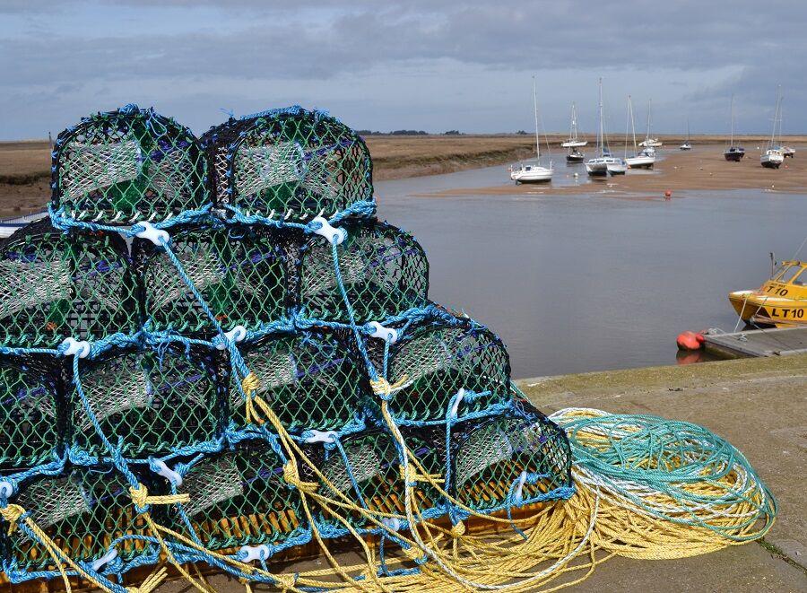 11. Norfolk Nets