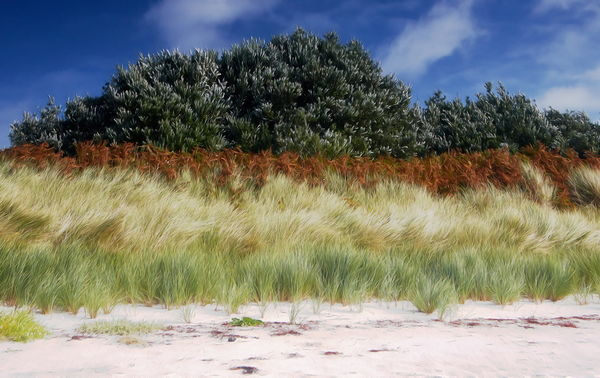 18/20 Bands of colour on the shore