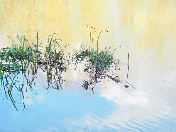 20/20 Flooded grass, Culham - Peter Delehar