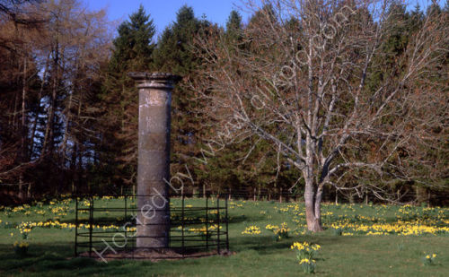 The Jougs,<br>