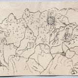 Luce Bay, Scotland, ink on paper, 38x48cm, 2007