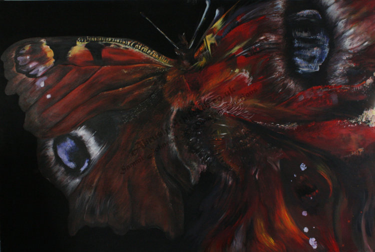 """Metamorphosis - Butterfly"""