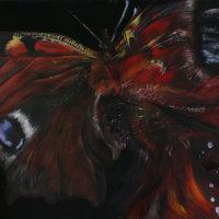 """""""Metamorphosis - Butterfly"""""""