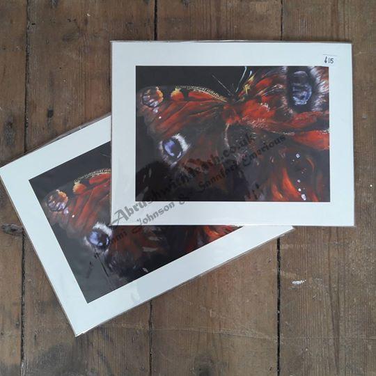 26.5x20cm Metamorphosis Butterfly Fine Art Print