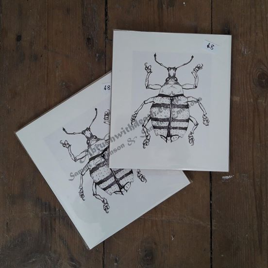 16x18cm Weevil Fine Art Print