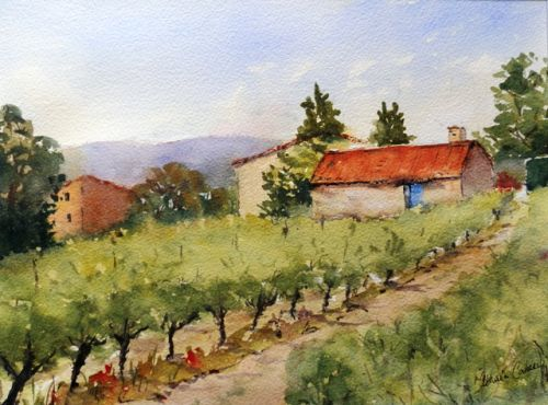 Path through the Vines,Provence