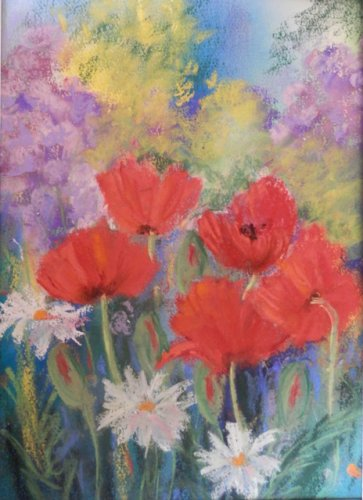 poppies and dasies