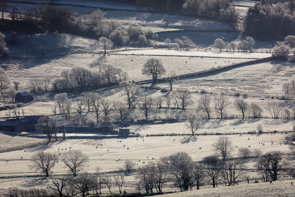 Frosty morning in St John's in the Vale from Blease Road