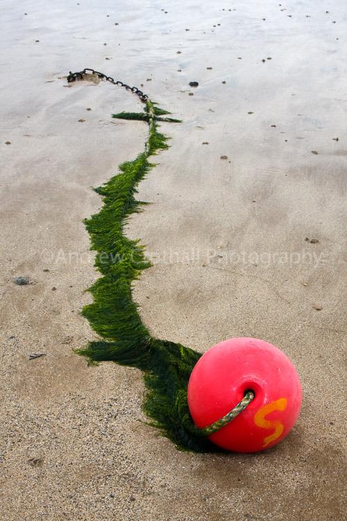 Pink buoy