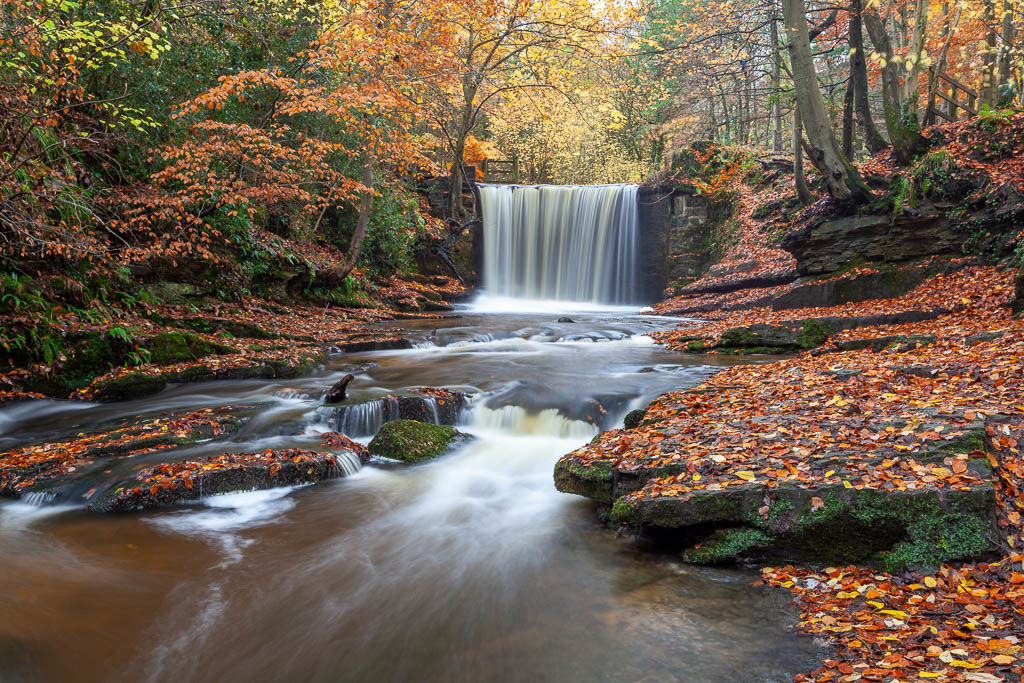 Nant Mill Country Park
