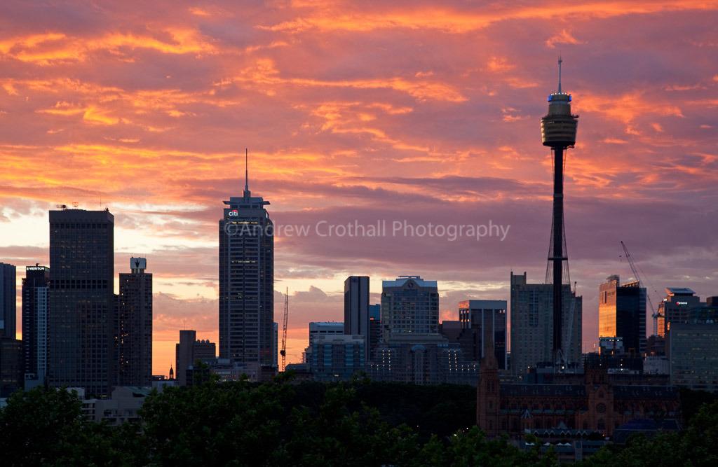 Sydney skyline #2