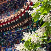 Temple & Flowers