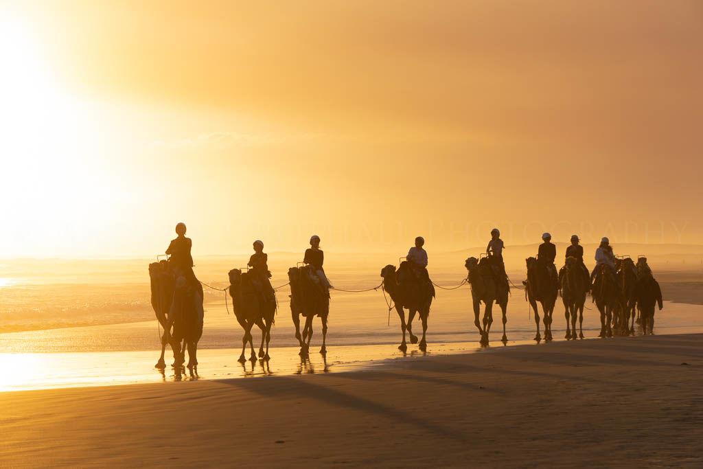 camel ride on Birubi beach
