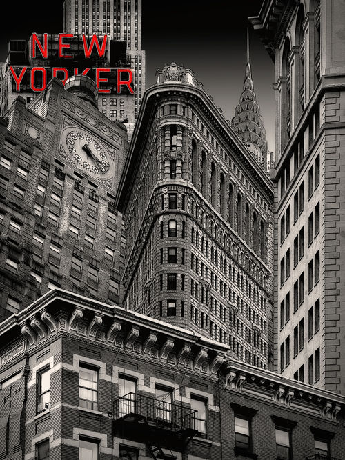 New Yorker View