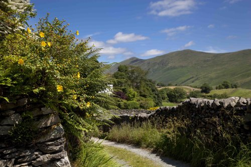 Summer in Troutbeck