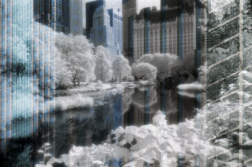 Central Park Fantasy