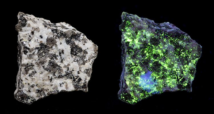 Mineral Autunite from Dartmoor,  in visible light, and fluoprescing in UV light.