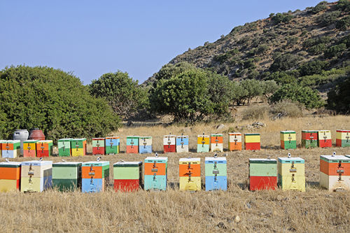 Bee Hives, western Crete, Greece