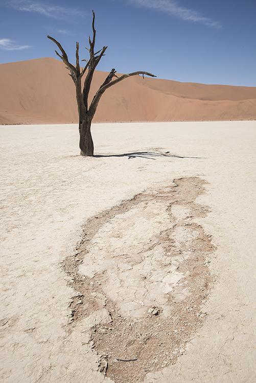 Dried Salt Pan, Sossusvlei, Namibia.