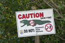 Warning Sign, Everglades