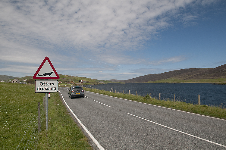 Sign for Otters in Shetland