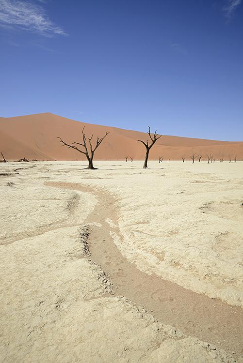 Dry river bed, Sossusvlei, Namibia