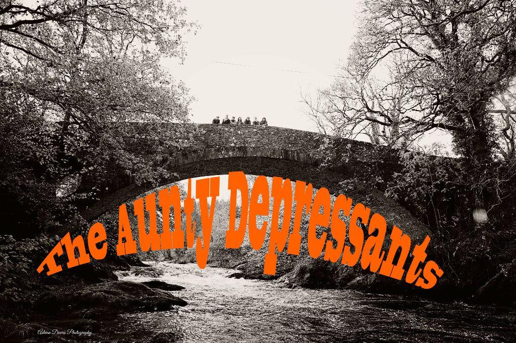 Aunty Depressants Band (1)