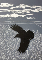 Black Crow in the Meadow