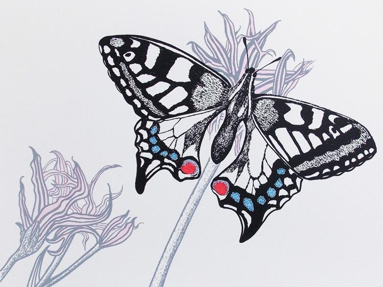 'Swallowtail Splendour'