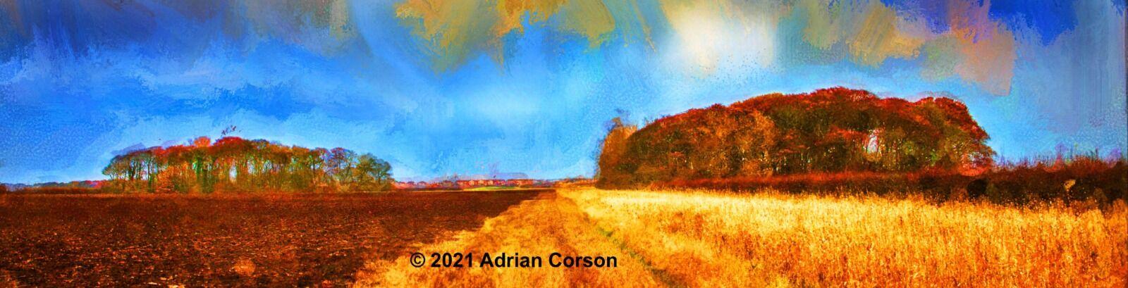 100-autumn fields