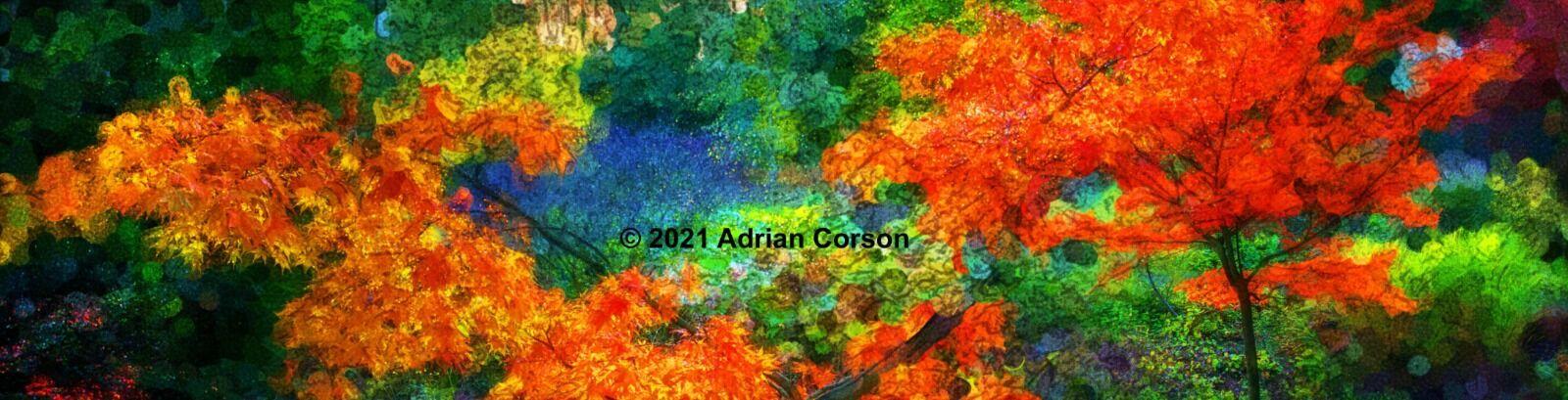 103-autumn trees