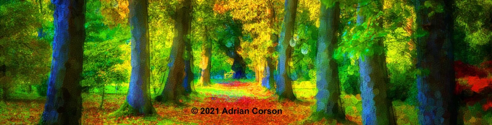 104-autumn tree avenue