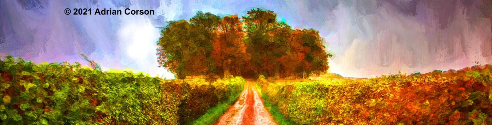 189-view to autumn woods