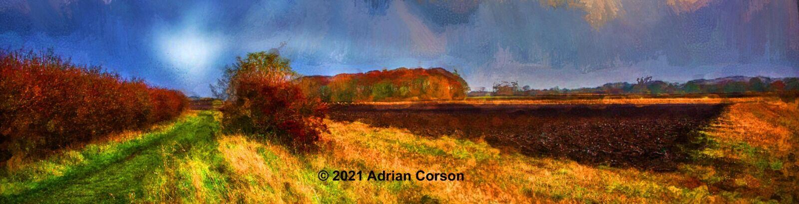 199-autumn fields