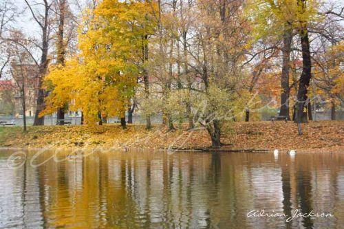 Autumn Trees; River Vlatava, Prague
